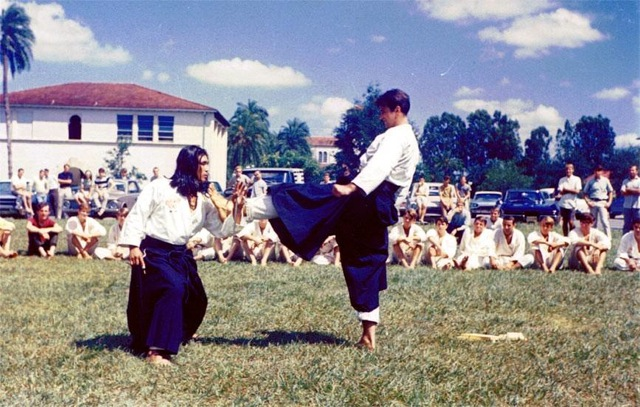 foster and yamamoto 1967