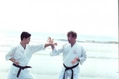 karate-Jackyl-Island1