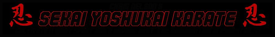 Chris Nelson's Sekai Yoshukai Karate Association